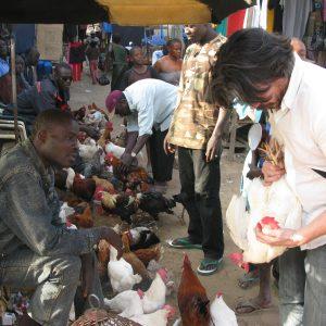 Tous Ensemble Dakar Biënnale (2010) - Koen Vamechelen Markt