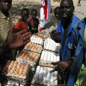 Tous Ensemble Dakar Biënnale (2010) - Aanvoer 8000 Eieren