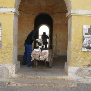 Tous Ensemble Dakar Biënnale (2010) - Mamadou Gomis